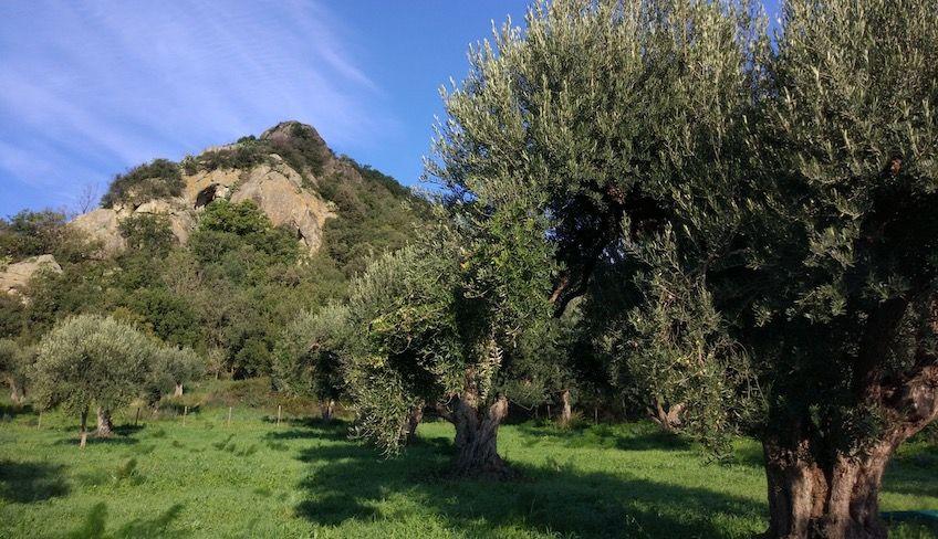 Alcantara Tour -