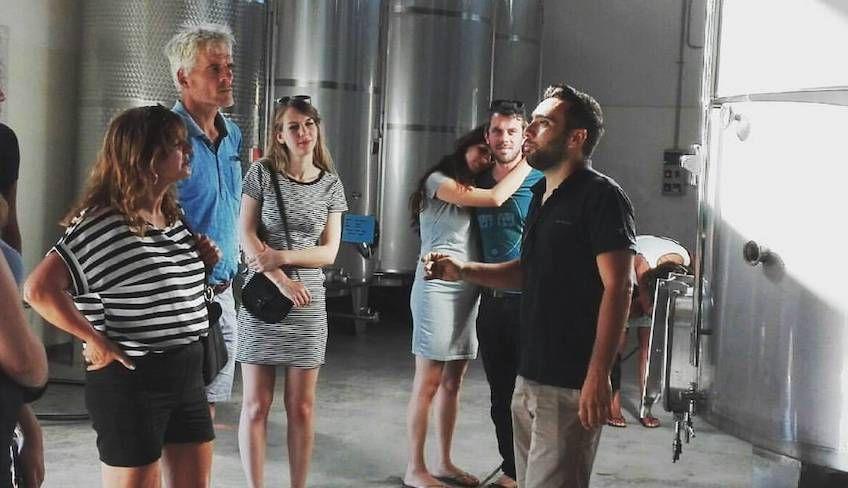 Wein Tour Trapani -