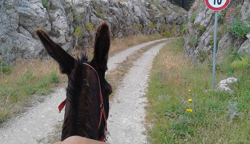 Trekking Sizilien -