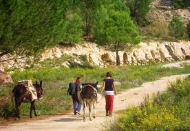 Trekking Sizilien