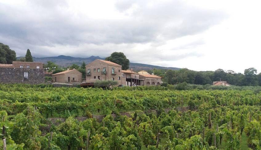 Ätna Wein Tour -