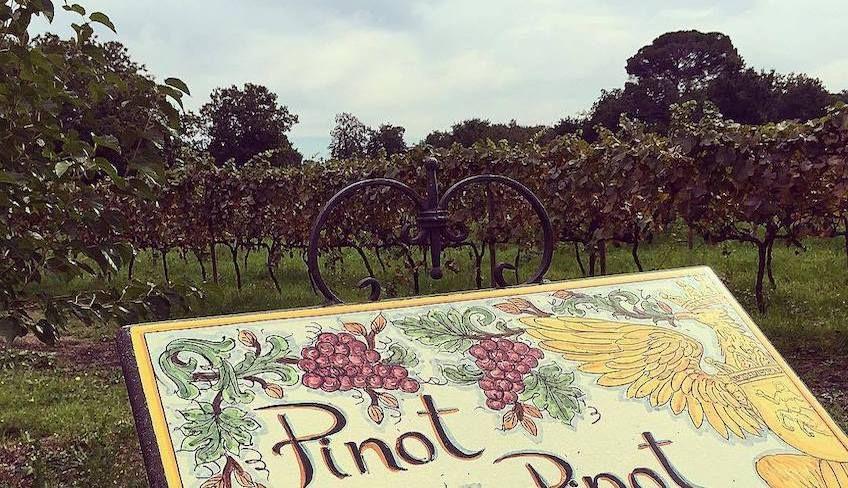 Weinprobe Ätna -