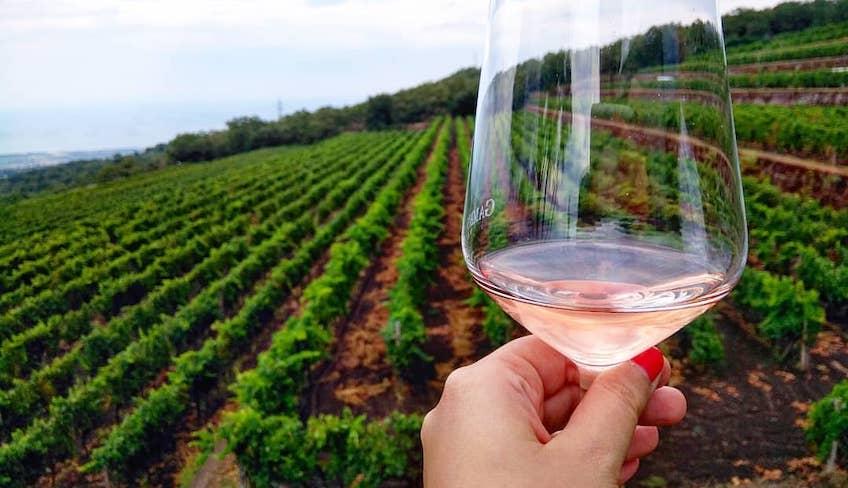Weinprobe auf dem Ätna