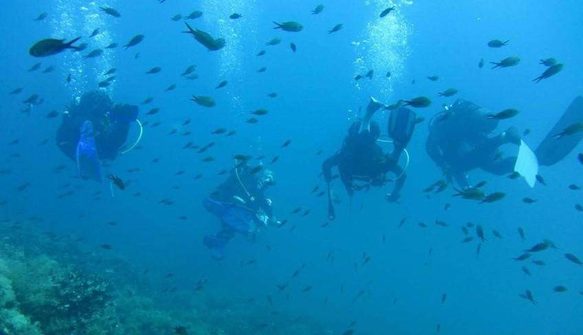 die Gewässer Siziliens Sportschule Sizilien Tauchgänge in die Tiefen Siziliens Marzamemi