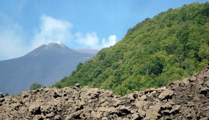 Exkursion auf dem Vulkan - Natur des Vulkans