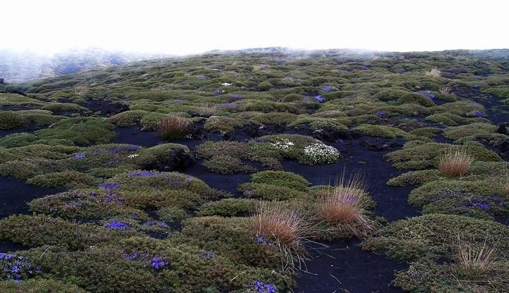 Trekking Ätna - Vulkan Ätna Sizilien