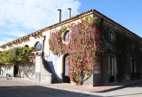 Kurs Weinverkostung - bekannte Weinkeller Sizilien