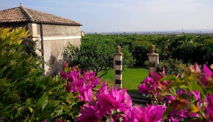 Orangen Siziliens - Sizilianische Weinkeller zum Besuchen