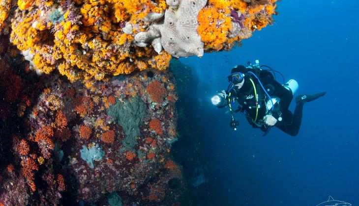 Sport & Abenteuer Urlaub in Sizilien - Diving Sicily
