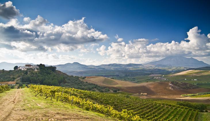 Weintourismus Sizilien berühmter sizilianischer Wein sizilianische Traditionen Weine