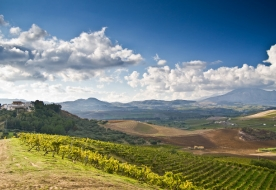 Weintourismus Sizilien - berühmter sizilianischer Wein