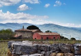 Weinverkostung - sizilianischer Mandelwein