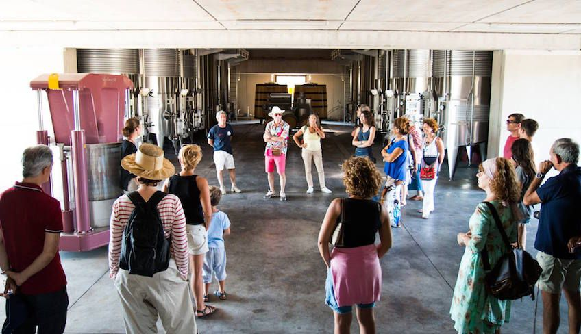 Weinverkostung Keller - Sizilien Weinregion