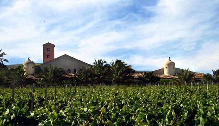 Verkostung Sizilien - sizilianische Weine Keller