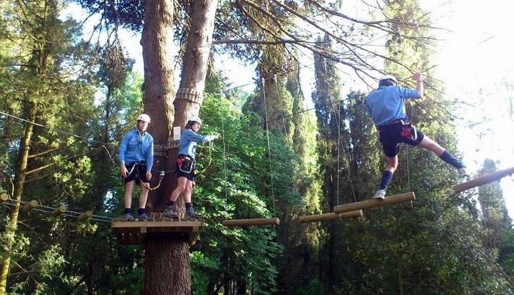 Abenteuerpark Tickets - Abenteuerpark