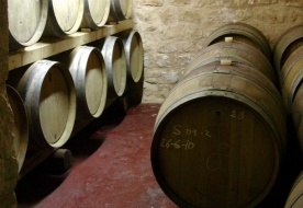 Wein Sizilien berühmter Wein Siziliens sizilianische Traditionen