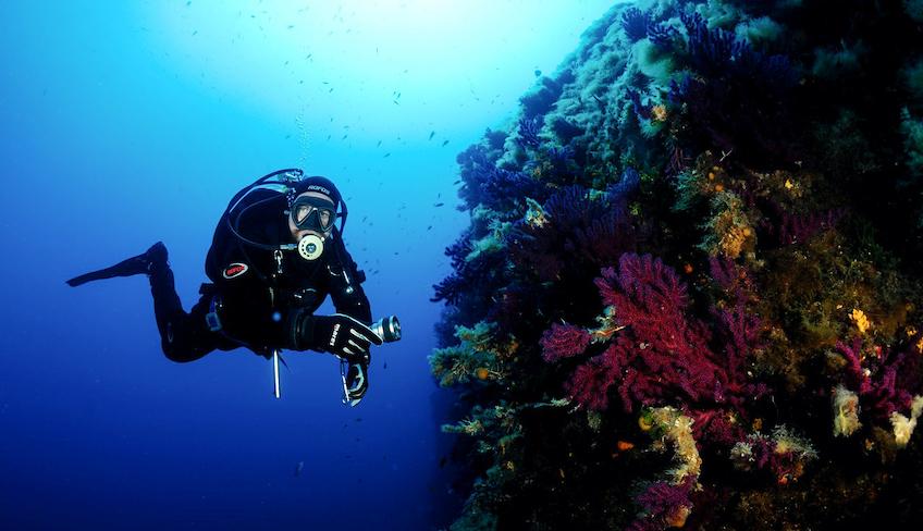 Diving Trips Wassersport Der beste Unterwasserurlaub Marsala