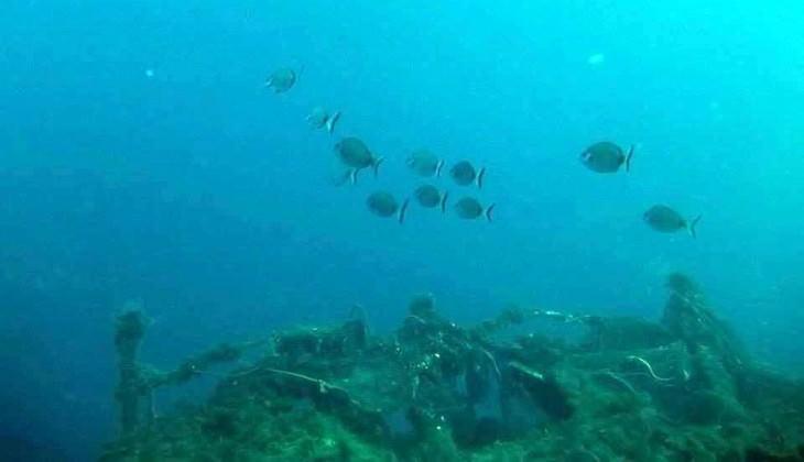 Marettimo Diving Center - Sommer Aktivurlaub