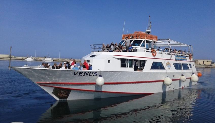 Daily Cruise Urlaub auf dem Schiff Marsala