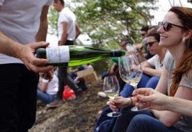 Weinverkostung Weinkeller Vulkan Ätna