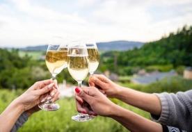 Wein Tour Ätna -