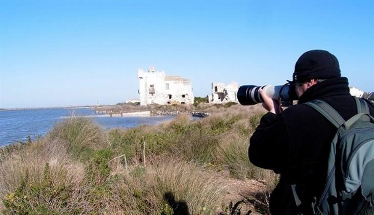 Wanderung der Vögel - Beobachtung der Vogelwelt