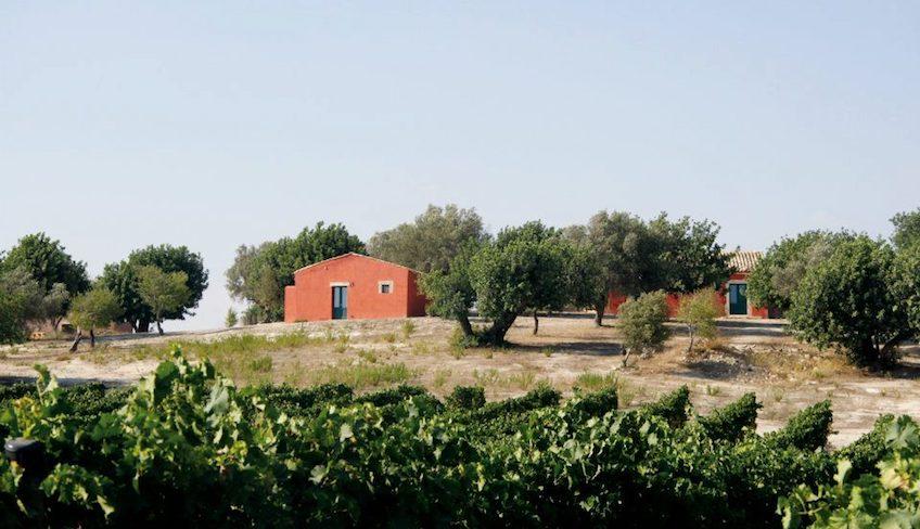 Weinverkostung in Sizilien