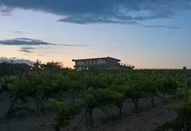 Noto Weinverkostung -